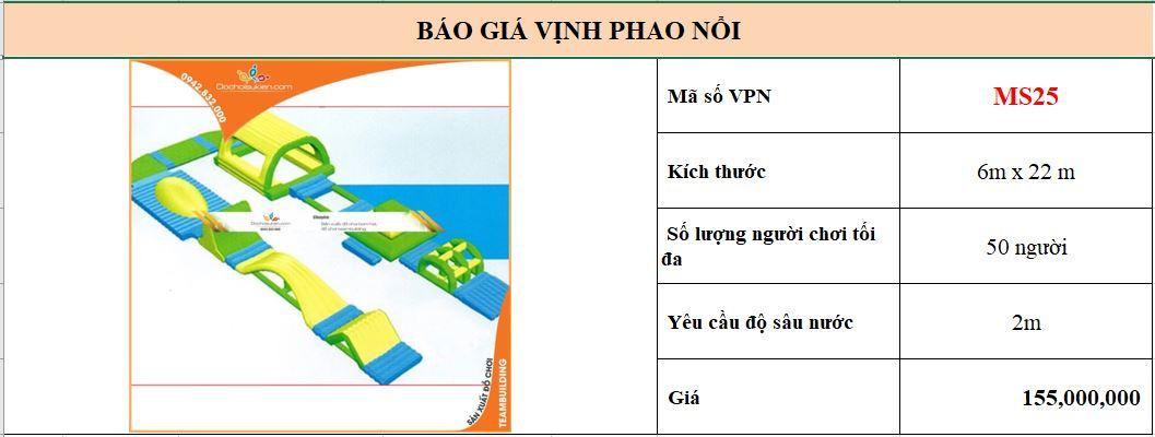 VPN25 1