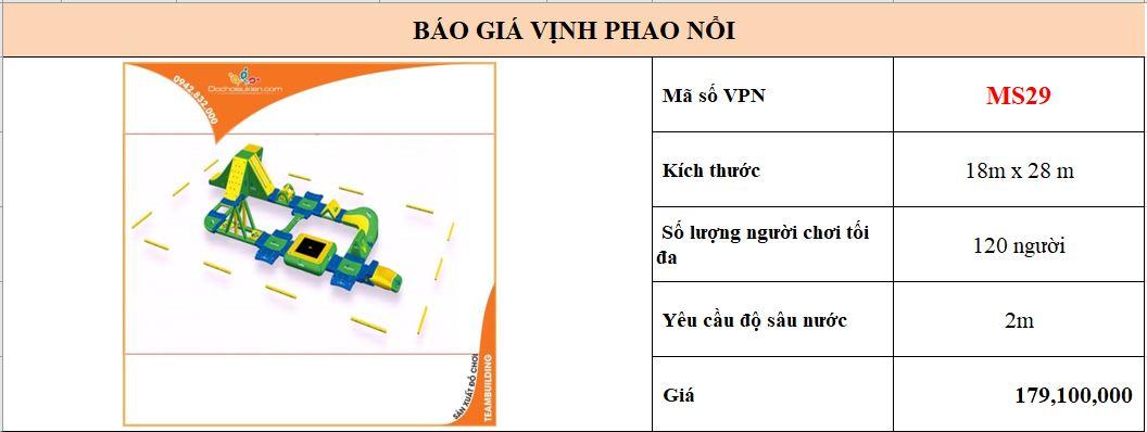 VPN29 1